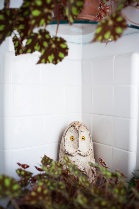 Interior of home of artist Diana Balmori, an owl hides amid plants in the kitchen