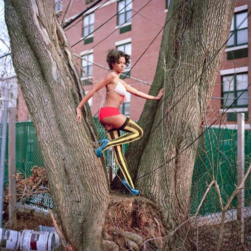 Picture of Beautiful Black Fashion Model in Lingerie Posing On Tree Trunks in NYC