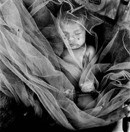 Fine Art Black and White Picture of Beautiful Baby Boy Sleeping Under Net