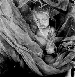 Black and White Picture of Baby Boy Sleeping Under Mosquito Net at Dump