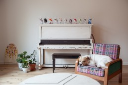 Interior Photos of Dog by Rustic Piano in home of OkCupid 's Christian Rudder NYC