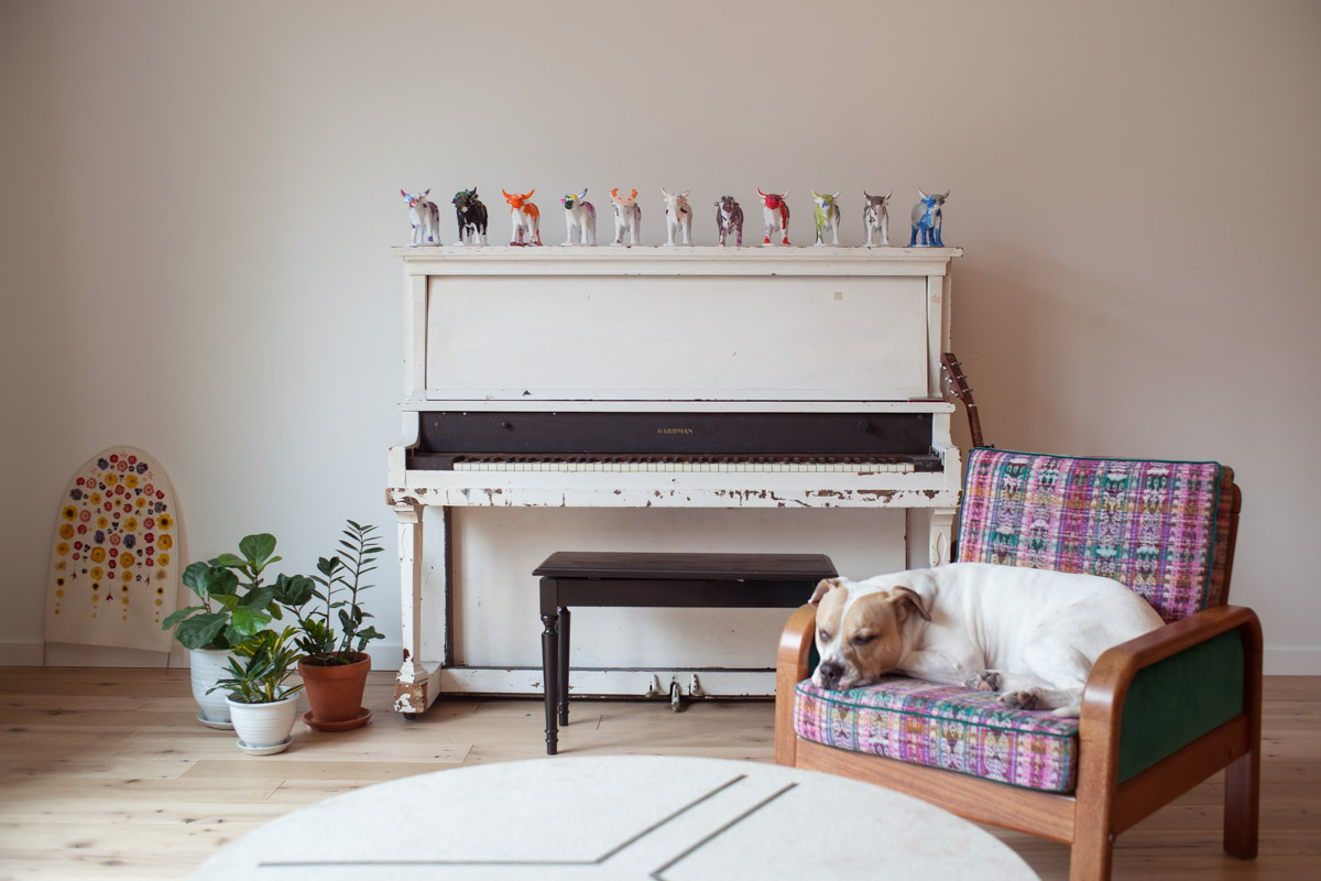 Modern Dallas Interior Photography   Dog by Rustic Piano in home of OkCupid 's Christian Rudder